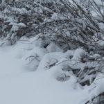 Talvinen Tuusula
