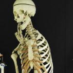 Kiinnostavatko lääketieteet? Meilahden opettavainen kampuspäivä avasi silmiä jatko-opinnoille